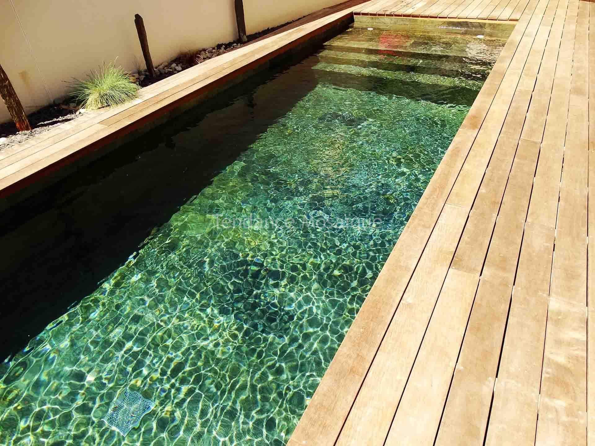 piscine en pierre naturelle quartzite r f rence silver dream carrelage piscine. Black Bedroom Furniture Sets. Home Design Ideas